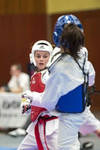 hp_taekwondo_1