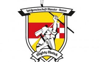hp_logo_tgmightymottek_small